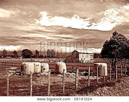duotone country scene