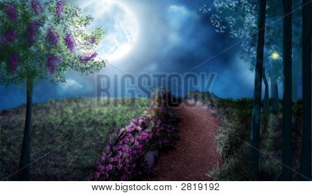 Camino iluminado por la luna