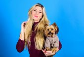 Dressing Dog For Cold Weather. Which Dog Breeds Should Wear Coats. Woman Carry Yorkshire Terrier. Do poster