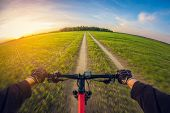 Riding Bike On Dirt Road In Field At Sunset, First-person View, Distortion Perspective Fisheye Lens poster