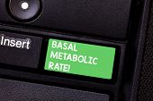 Text Sign Showing Basal Metabolic Rate. Conceptual Photo Minimum Energy Level Require To Sustain Vit poster