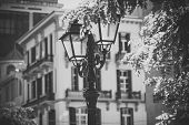 Vintage Style Old Street Lamp In Park, Defocused. Beautiful Retro Street Lamp Old Fashioned Architec poster