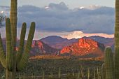 picture of ocotillo  - Framed Sunset Lit Roblas Butte In Superstition Wilderness Near Phoenix - JPG