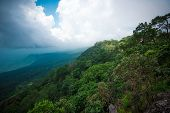 The Forest Jungle With Tree On Mountain Cliff Landscape Scenic View Nature And Rain Clouds The Storm poster