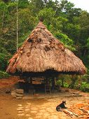 stock photo of ifugao  - A shot of a native Ifugao hut in Batad Ifugao province Philippines - JPG