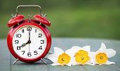 Daylight Savings, Spring Forward Concept - Web Banner Of An Alarm Clock And Flowers poster