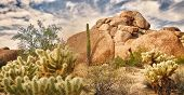 foto of chola  - Beautiful desert landscape with Saguaro cacti and red rock buttes - JPG