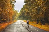 Cycling In The Park. Lifestyle Concept. Hipster Woman Cycling In The Park In Autumn. Healthy Lifesty poster