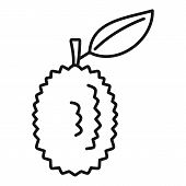 Whole Raw Durian Icon. Outline Whole Raw Durian Vector Icon For Web Design Isolated On White Backgro poster