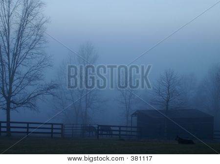 Cool Foggy Blue