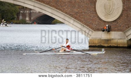 Boston, Ma 10 18 2008 Grand-Master Singles 50+ In Charles Regatta - Racer Mark Fagan