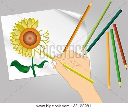 color pencil vector