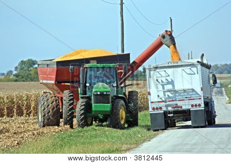 Filling The Grain Truck
