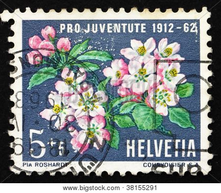 Postage stamp Switzerland 1962 Apple Blossoms, Apple Tree, Malus