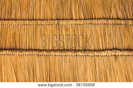 Thatched Roof  Straw