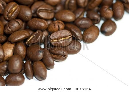 Close Up Macro Coffee Beans Isolated