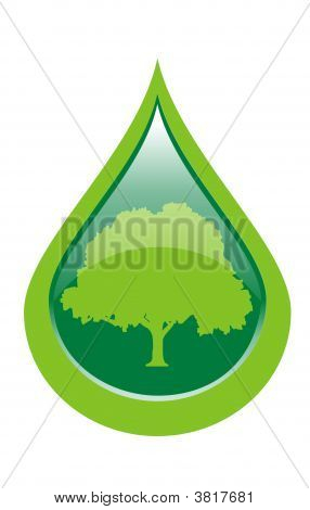 Water Drop With Tree