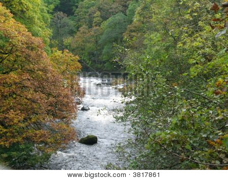 Autumnal River Greta