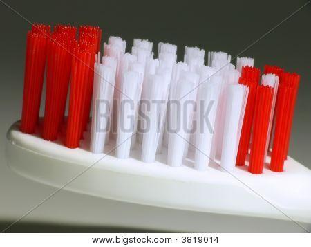 Macro Toothbrush