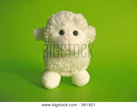 Little Lamb Toy