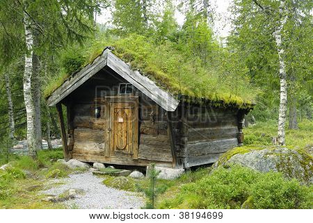 "Old wooden shed with a ""green"" roof in Norway"