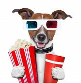 stock photo of popcorn  - 3d glasses movie popcorn dog watching a film - JPG
