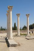 Ancient columns on Kos island, Greece