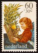 Postage stamp Netherlands 1980 Boy Reading King of Frogs