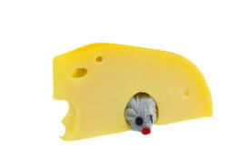 image of fancy mouse  - Swiss cheese with a mouse looking from hole isolated on white - JPG