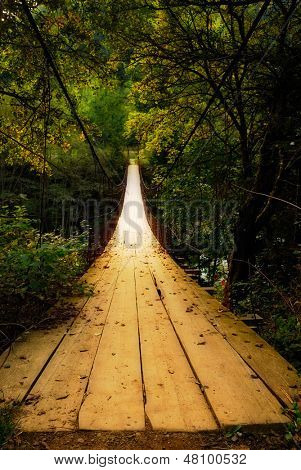 suspended wooden bridge illuminated by light