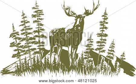 Woodcut Moose Design