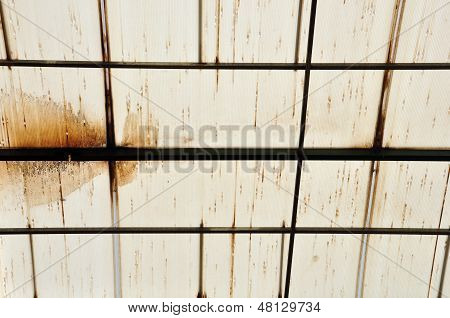 Stains On Glasshouse Roof