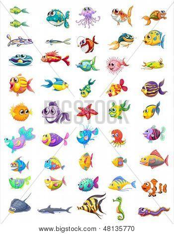 Abbildung einer Gruppe von verschiedenen Fische auf weißem Hintergrund
