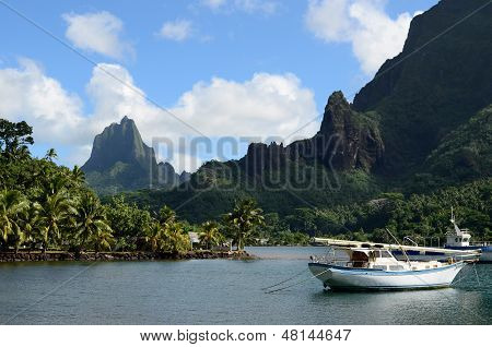 Bay In Tropical Moorea