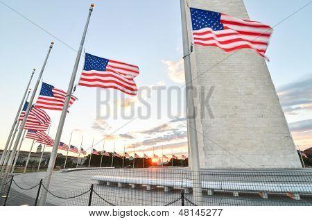 Washington Monument with waving United States flags on flagpoles at sunrise - Washington DC United States