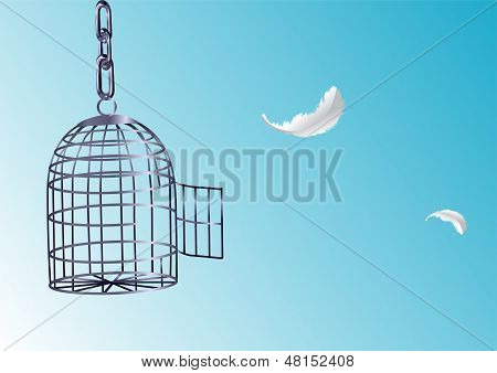 Opened Cage