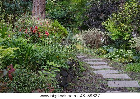 Backyard Woodland Path