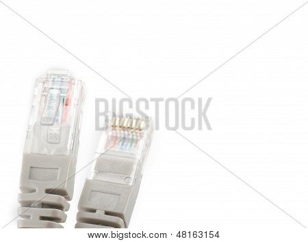 Macro Of Internet Cable Isolated On White Background