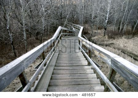 Eerie Stairway