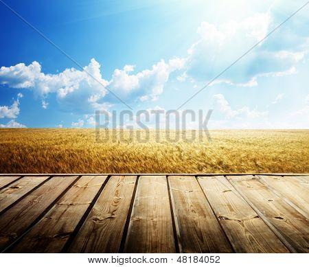 piso de madera y campo de trigo de verano