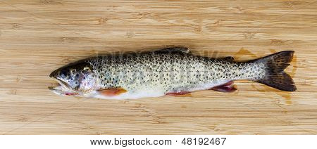 Fresh Wild Trout On Natural Bamboo Wood