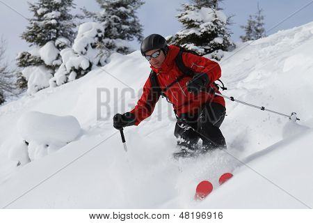Freeriding Between Fir Trees