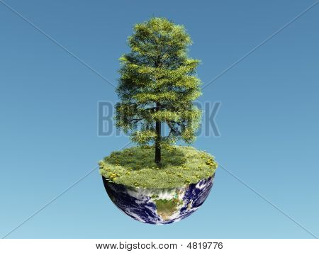 Single Tree On Earth