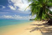picture of kuramathi  - this is very beautiful tropical beach thailand - JPG
