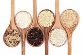 pic of staples  - Rice varieties in olive wood spoons over white background - JPG
