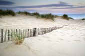 stock photo of dune grass  - Landscape of grass in sand dunes at snrise with wooden fences under sand dunes - JPG