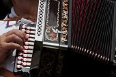 stock photo of accordion  - Detail of fingers playing the accordion with buttons - JPG