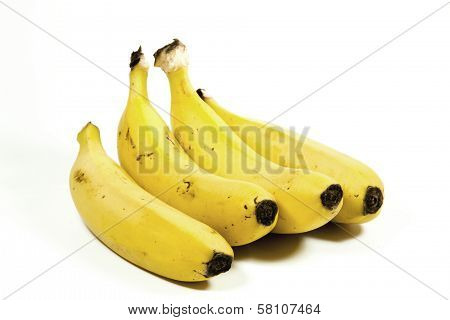Four Isolated Yellow Ripe Bananas On White