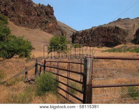 Wild Horse Corral