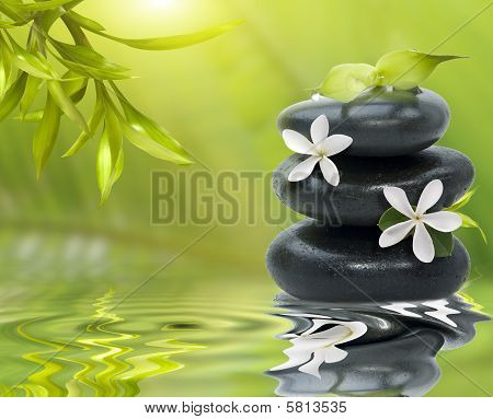 Spa Still Life, With White Flowers On The Black Stones And Bamboo Leafs